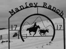 Manley Ranch: one of several ranches using innovative techniques to learn to live alongside wolves. Photo: Jim Wickens